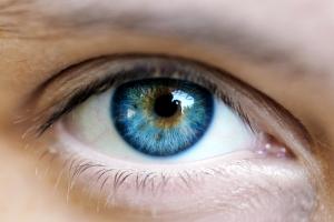 Thực phẩm dễ tìm lại siêu tốt cho mắt