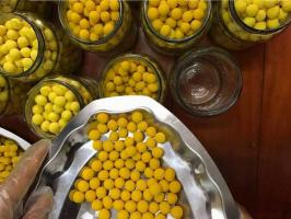 Thương hiệu viên tinh nghệ mật ong tốt nhất trên thị trường