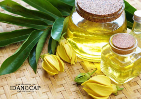 Loại tinh dầu thiên nhiên xông thơm phòng ngủ ngon, đuổi muỗi và giảm căng thẳng