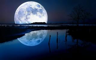 Phi hành gia đặt chân lên Mặt Trăng đầu tiên