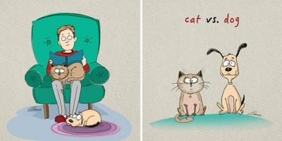 Video chứng minh lũ  chó mèo đang