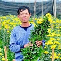 Top 8 Xã giàu nhất huyện Mê Linh, Hà Nội