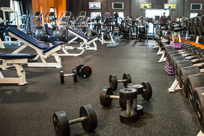 Top 10 phòng tập gym uy tín nhất tại Cần Thơ
