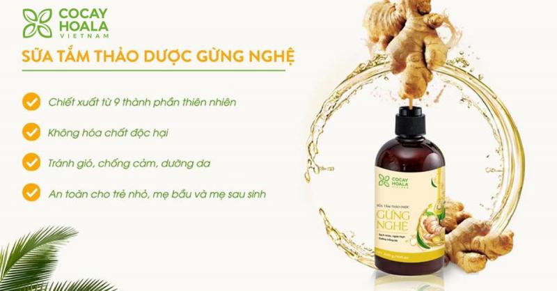 Top 10 thương hiệu sữa tắm được tin dùng nhất Việt Nam