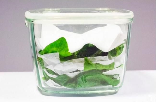 Bảo quản rau diếp và rau bina