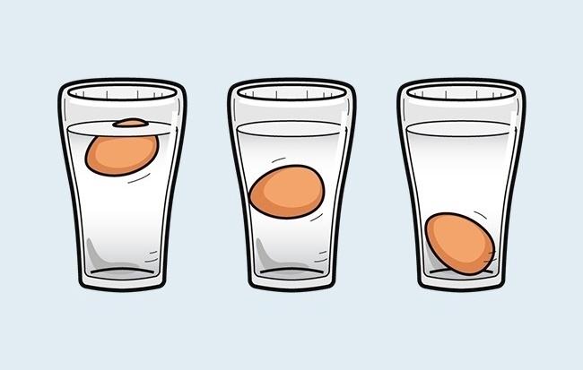 Kiểm tra độ tươi của trứng