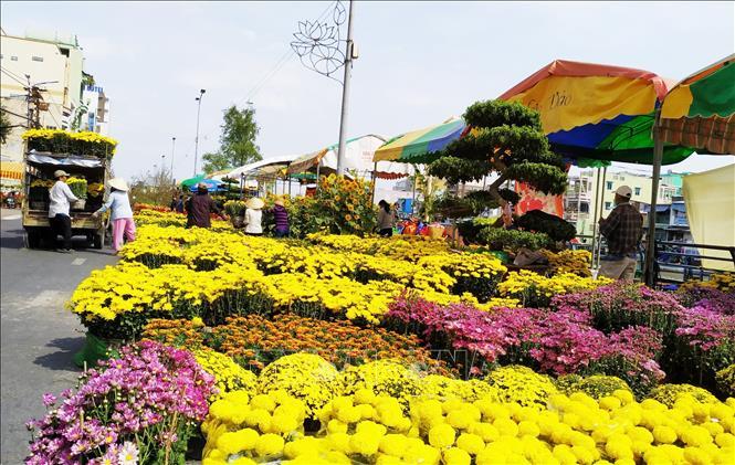 Top 9 chợ hoa Tết nổi tiếng nhất Hà Nội đón Xuân 2021