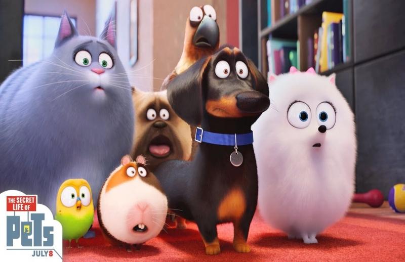 Top 12 Bộ phim hoạt hình về động vật thành công nhất thế giới