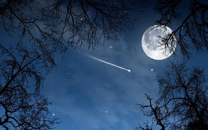 Khi trăng đã lên quá đầu ngọn tre, ta đã có thể nhìn thấy rõ hình ảnh chú Cuội ngồi bên gốc đa.