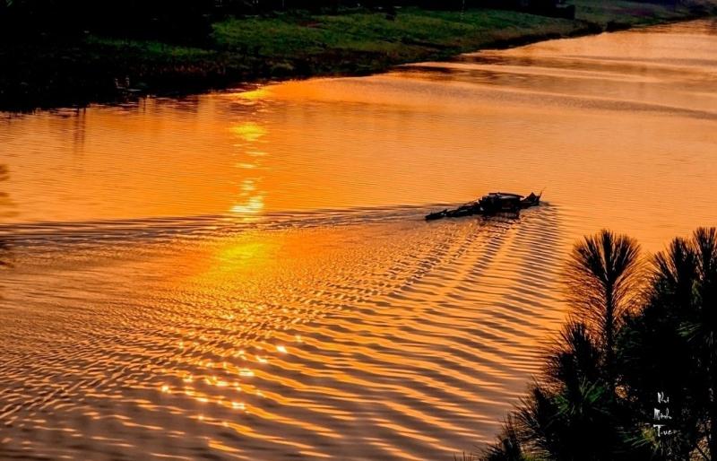 Những hôm trời trong và ánh dương rực vàng như thế, tôi có thể quan sát dọc hai bên bờ của dòng sông.