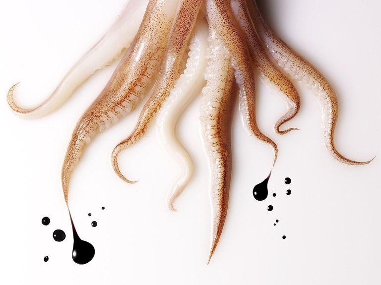 Laughing Squid là nơi hội tụ các bạn có niềm đam mê nghệ thuật.