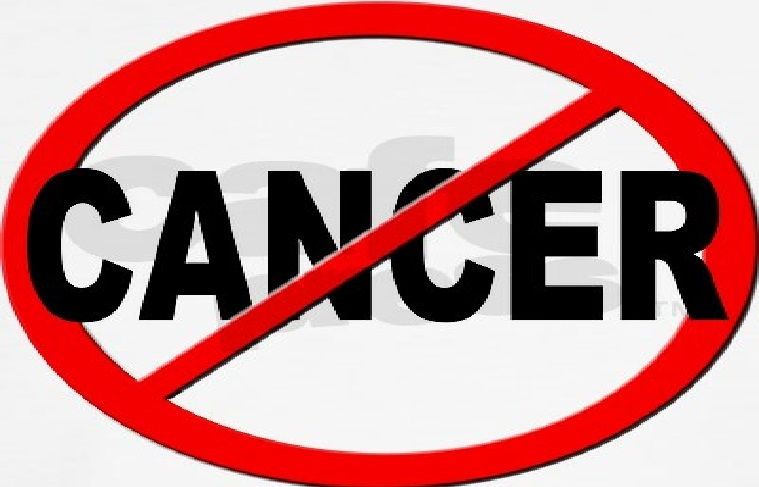 Hỗ trợ điều trị ung thư