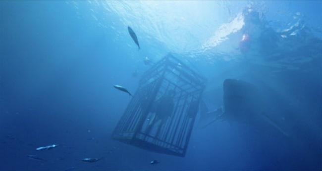 47 Meters Down - Độ sâu 47 mét