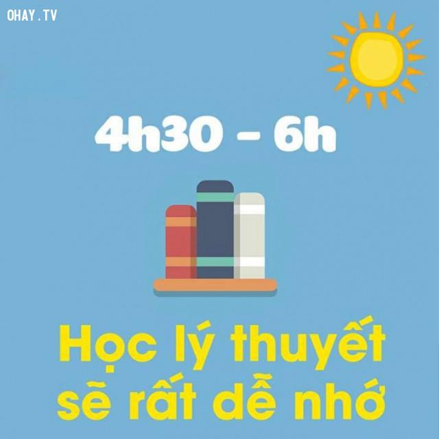 4h30 – 6h : Học lý thuyết