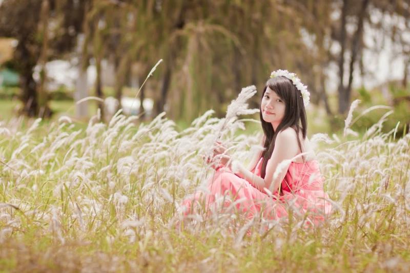 Cánh đồng hoa lau – Đà Nẵng