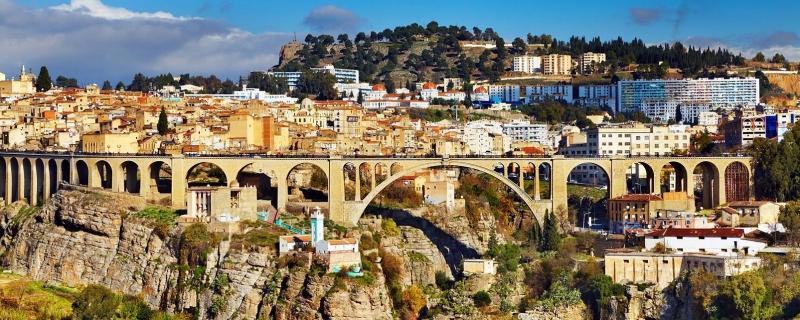 Algeria là thị trường xuất khẩu lao động thứ 9 của Việt Nam