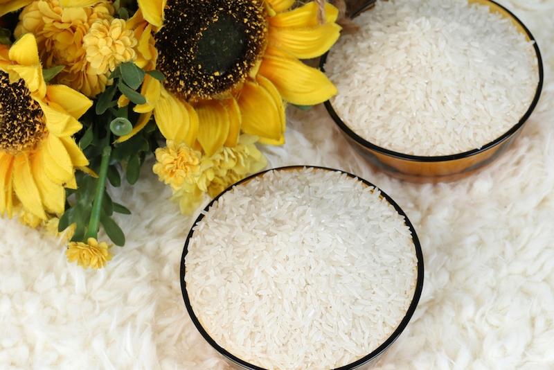 Alogao - Đại lý gạo miền Tây thơm ngon