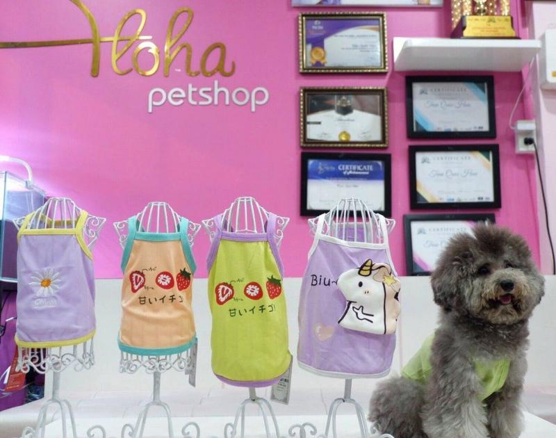 ALOHA Petshop Nha Trang