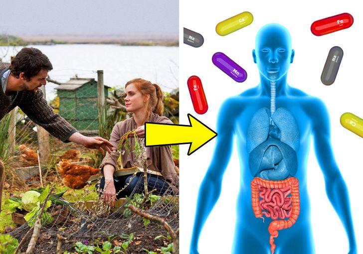 Ăn các thực phẩm hữu cơ