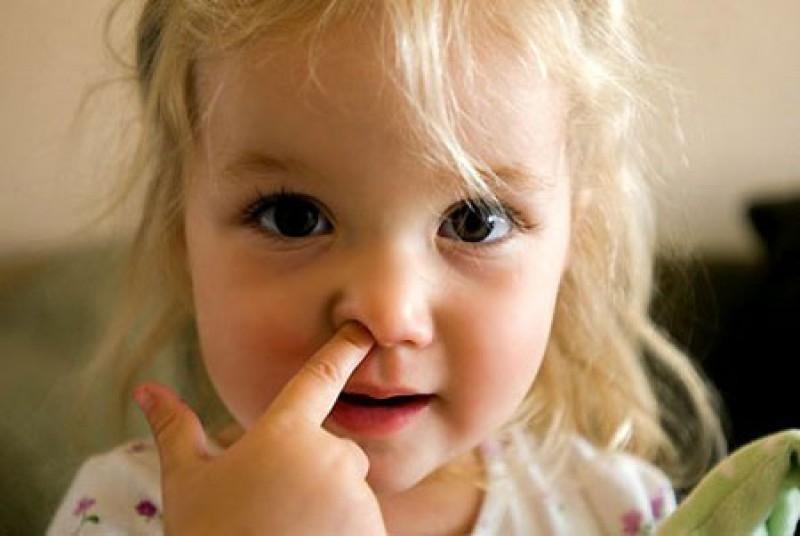 Ăn gỉ mũi tốt cho sức khỏe