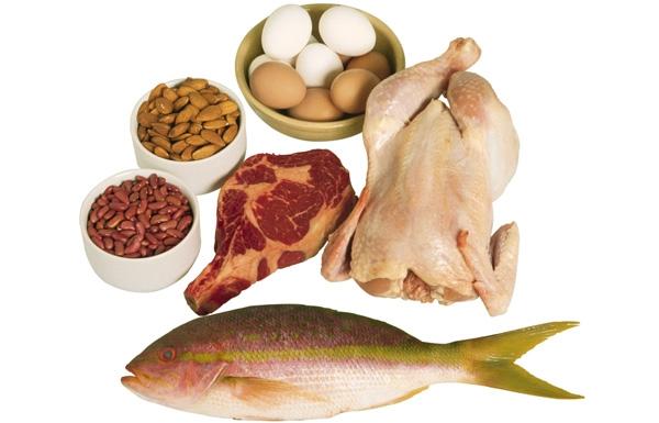 Ăn thực phẩm chứa nhiều protein