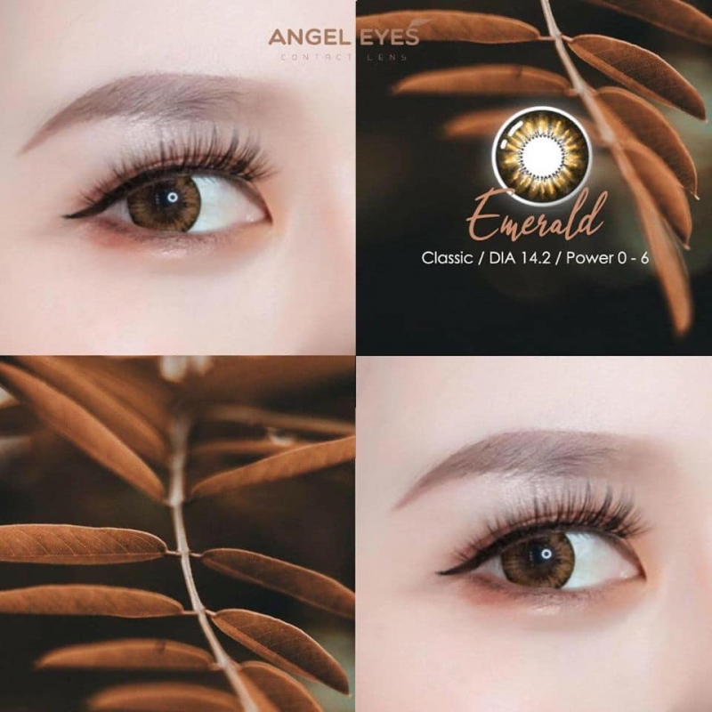 Angel Eyes Contact Lens Nha Trang