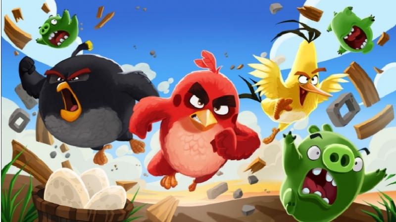 Những chú chim đang nổi giận
