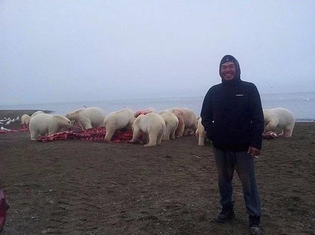 Ảnh chụp ở Bắc Cực, phía sau người đàn ông tươi cười là đàn gấu đang xâu xé xác cá voi
