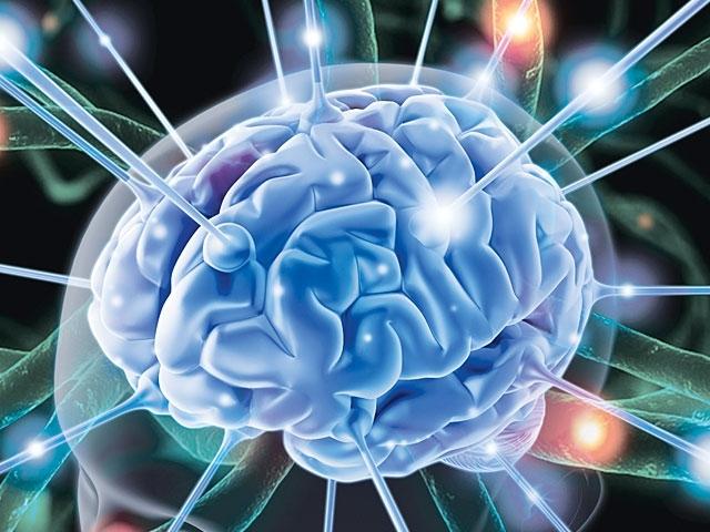 Ảnh hưởng tới não