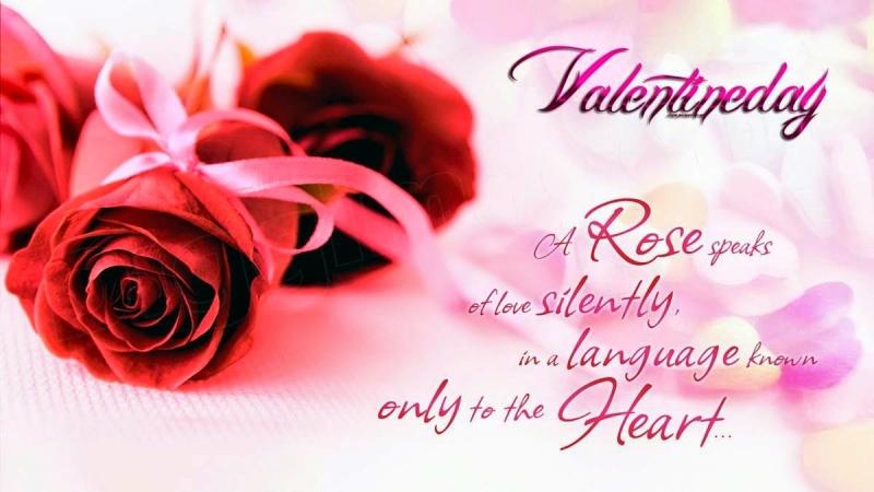 Hoa hồng biểu tượng của tình yêu