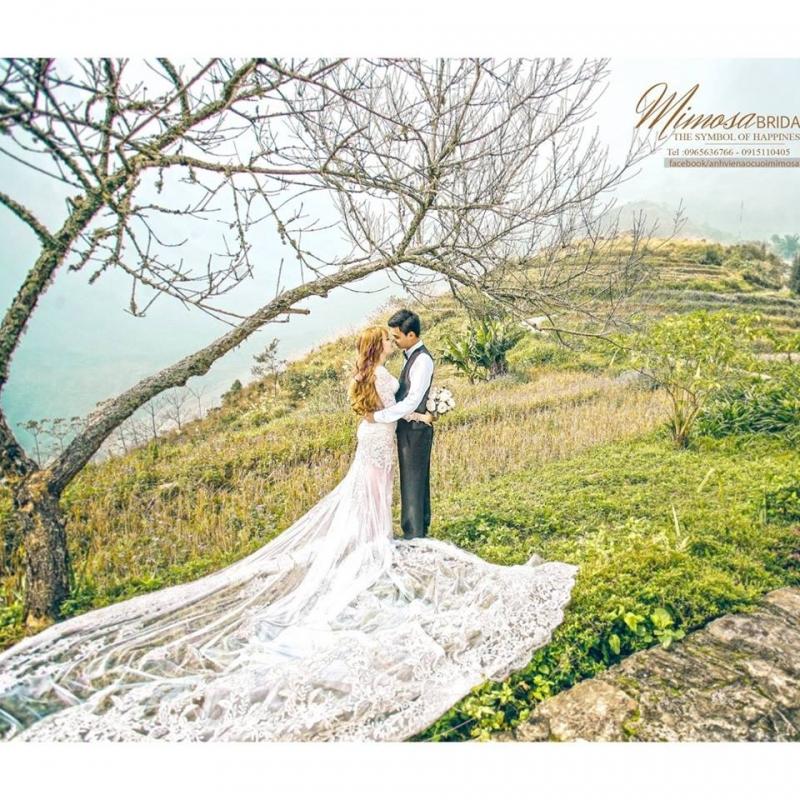 Ảnh viện áo cưới Mimosa Yên Bái