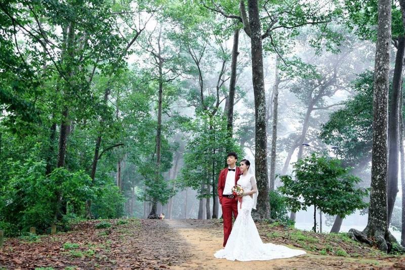 Áo cưới Ami