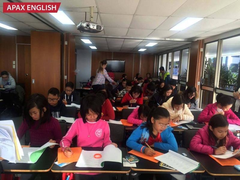 Apax English Hạ Long