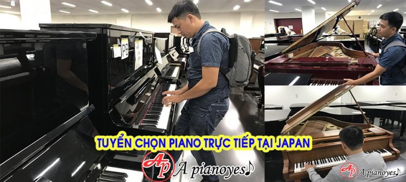 Đến với APIANOYES Quý khách hàng hoàn toàn có thể tìm mua piano giá rẻ với chất lượng đạt chuẩn Nhật Bản.