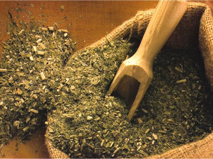 Argentina có điều kiện tự nhiên thuận lợi để trồng trà