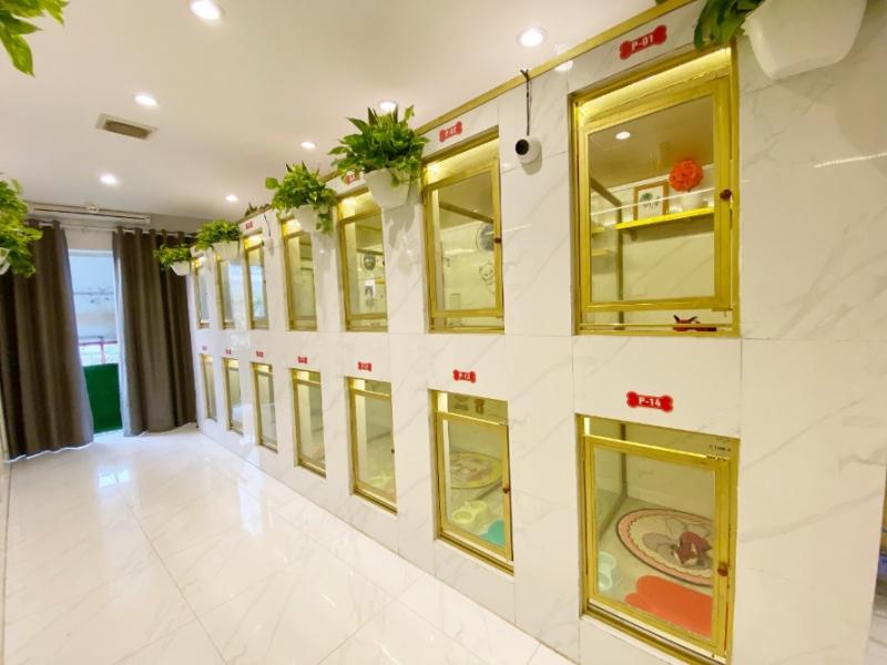 Hệ thống phòng khách sạn lưu trú tại AZPET