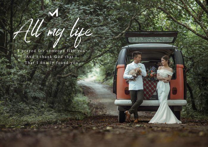 Vườn quốc gia Ba Vì, địa điểm lý tưởng để thực hiện bộ ảnh cưới lưu giữ khoảnh khắc hạnh phúc của cặp đôi.