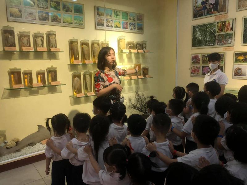 Baby World Montessori Đà Nẵng