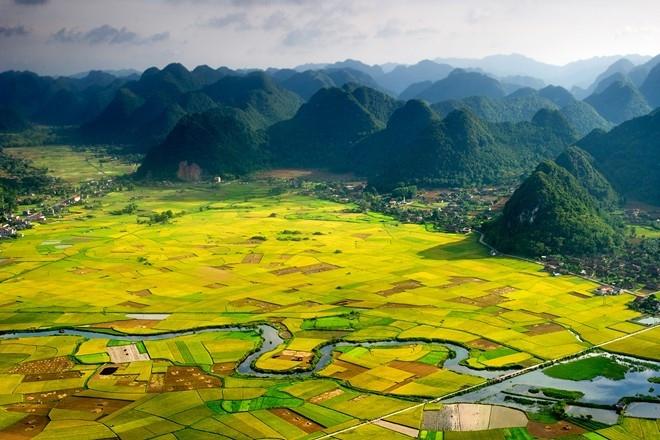 Khung cảnh quyến rũ với dòng sông chảy len lỏi bên cánh đồng lúa trải rộng bốn bề.