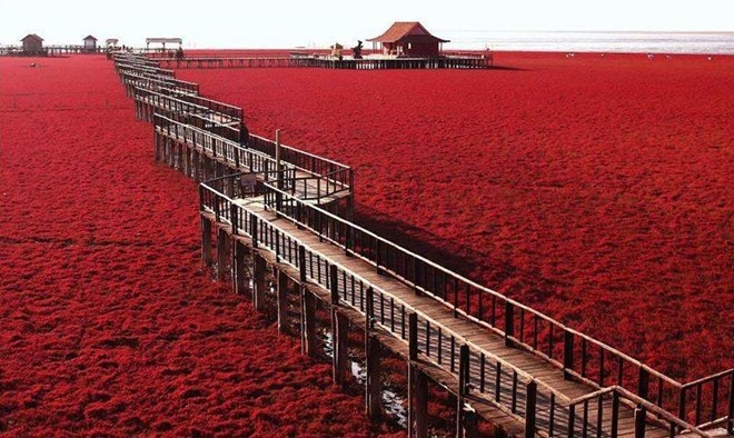 Bãi biển Đỏ, Trung Quốc