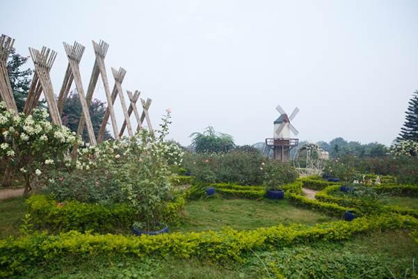 Vườn hoa bãi đá sông Hồng - điểm du lịch lý tưởng ngay Trung tâm Thủ đô