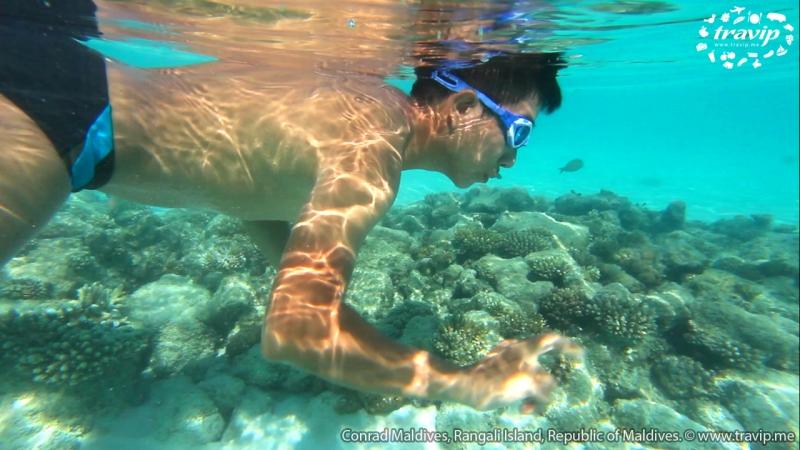 nước biển xanh trong du khách có thể lặn ngắm các rạng san hô