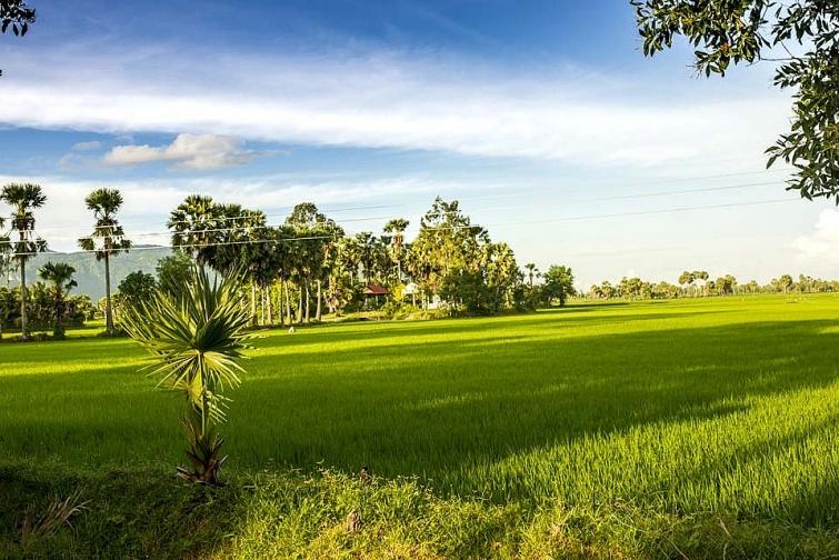 Bài thơ hay về làng quê Việt Nam