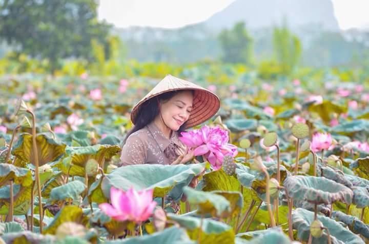 Top 20 Bài thơ hay về hoa sen