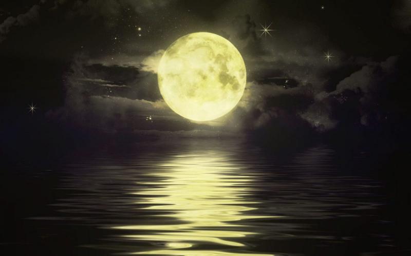 Bài thơ: Những mùa trăng đi qua
