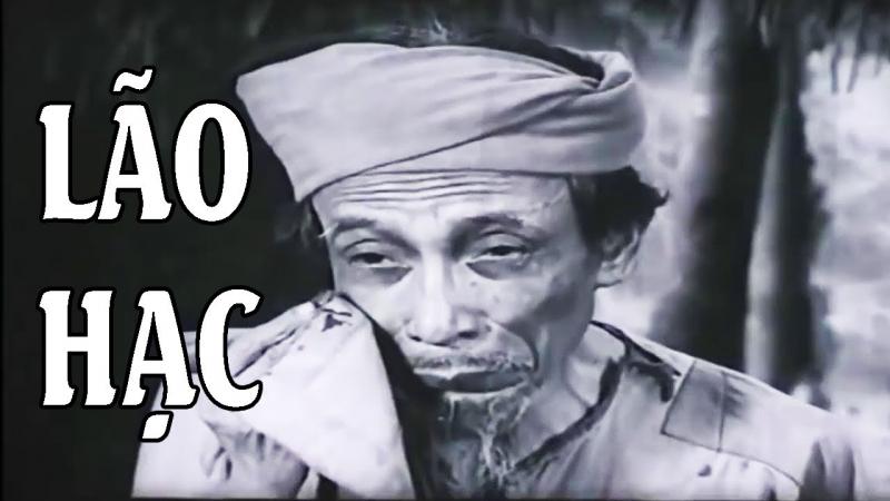 Top 10 bài văn phân tích nhân vật Lão Hạc trong truyện ngắn