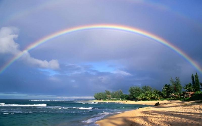 Top 10 bài văn tả cảnh biển hay nhất