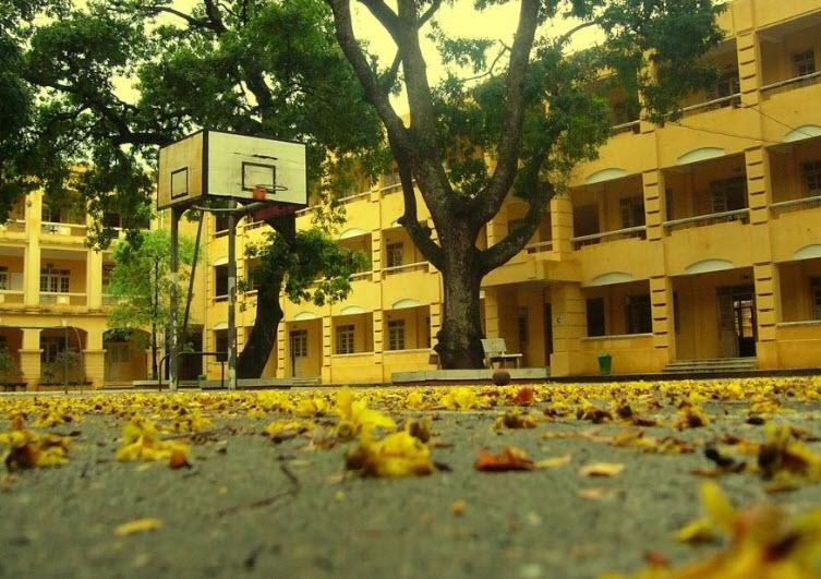 Cảnh sân trường mùa thu