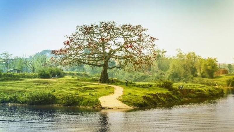 Sông Thương êm đềm