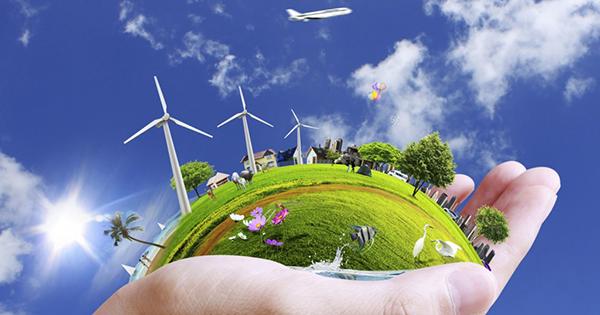 Top 14 bài văn thuyết minh về vai trò của cây cối trong việc bảo vệ môi trường sống